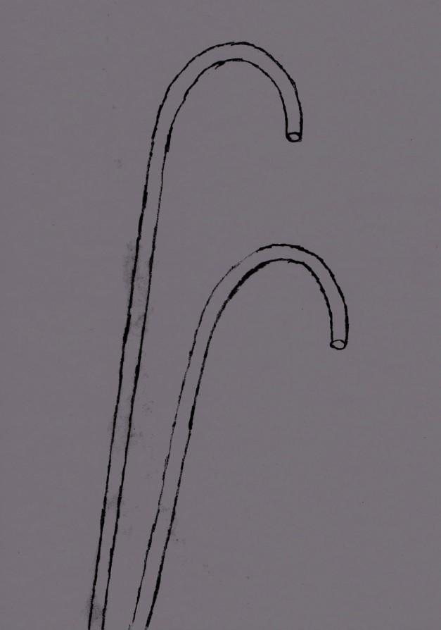 dual upright